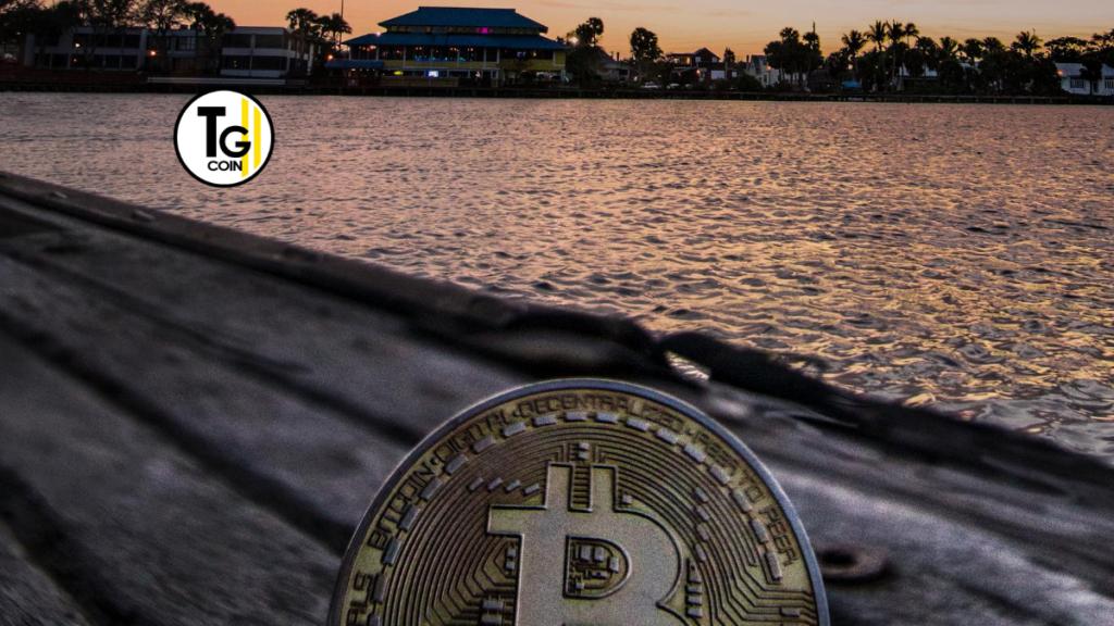 scambi criptovaluta caso bitcoin portafoglio