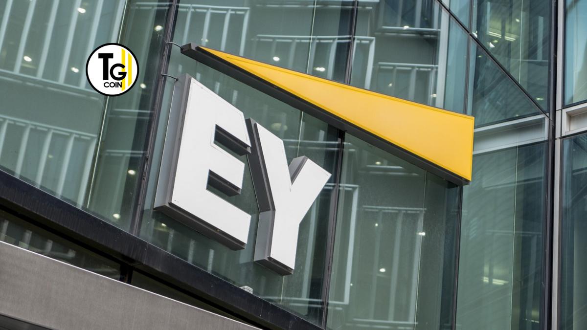 EY è un network mondiale di servizi professionali. La società fa parte delle cosiddette Big Four: le quattro più grandi aziende di revisione.
