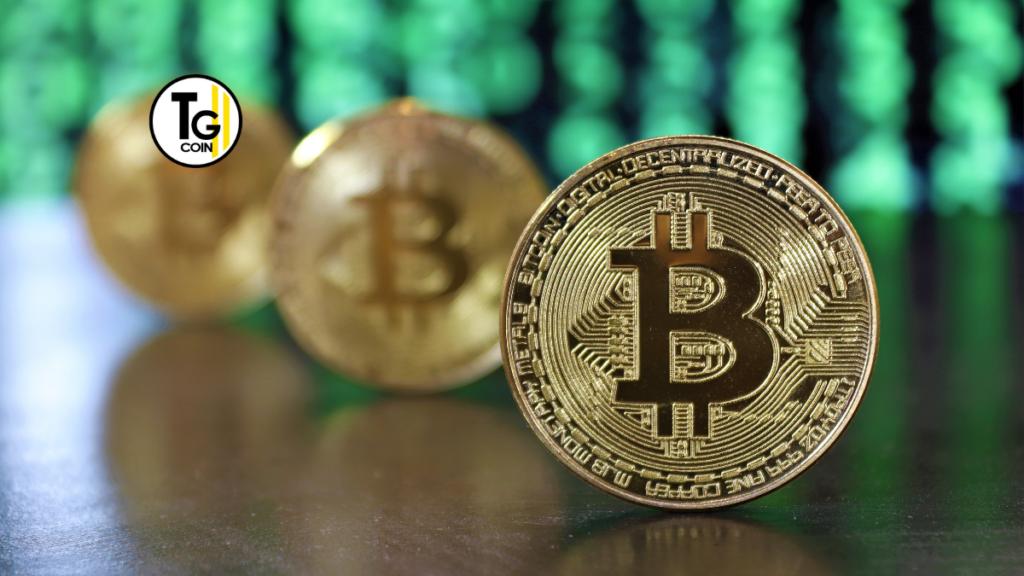 Tantissimi vip hanno scelto di investire e fidarsi di bitcoin o delle criptovalute. Stiamo parlando di Paris Hilton o di Mike Tyson, ma la lista è molto lunga.