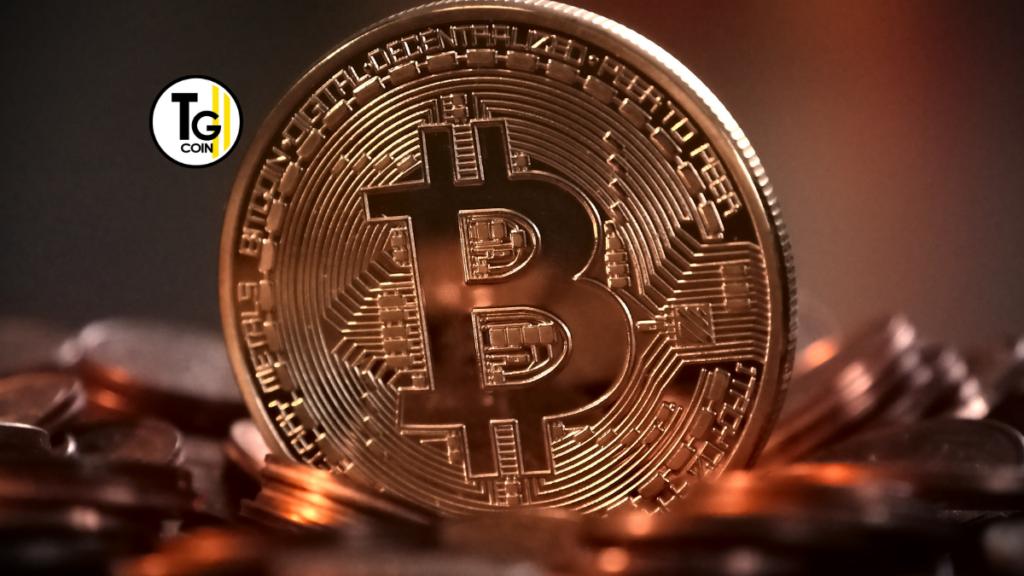 """L'ascesa di Bitcoin preoccupa la BCE che ha messo in dubbio il """"business divertente"""" di bitcoin e le sue opzioni di privacy. Questo potrebbe innescare uno scontro tra la CBDC europea e la criptovaluta madre."""