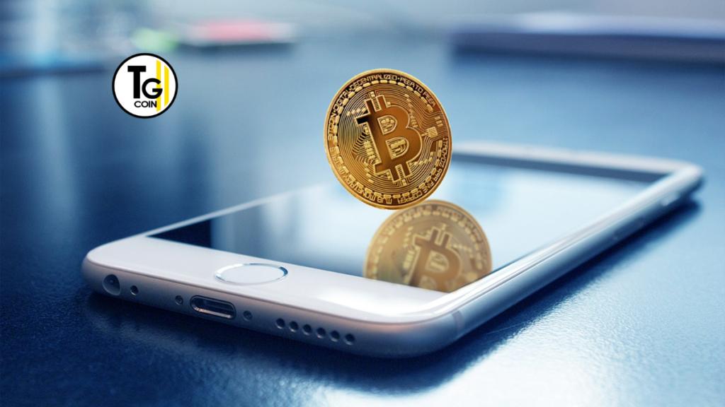 Il commercio di bitcoin ha avuto il suo picco più alto durante la pandemia. Infatti in Nigeria le transazioni bitcoin hanno registrato il massimo del 30% tra gennaio e settembre.