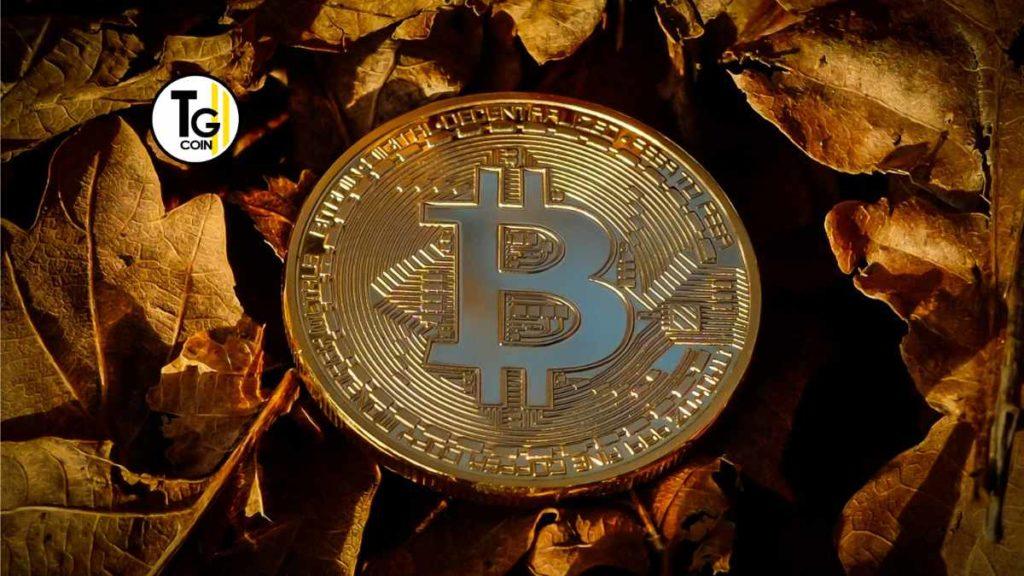 In molti credono che le previsioni di Bitcoin nel futuro di questo siano addirittura sopra i 200 mila dollari.