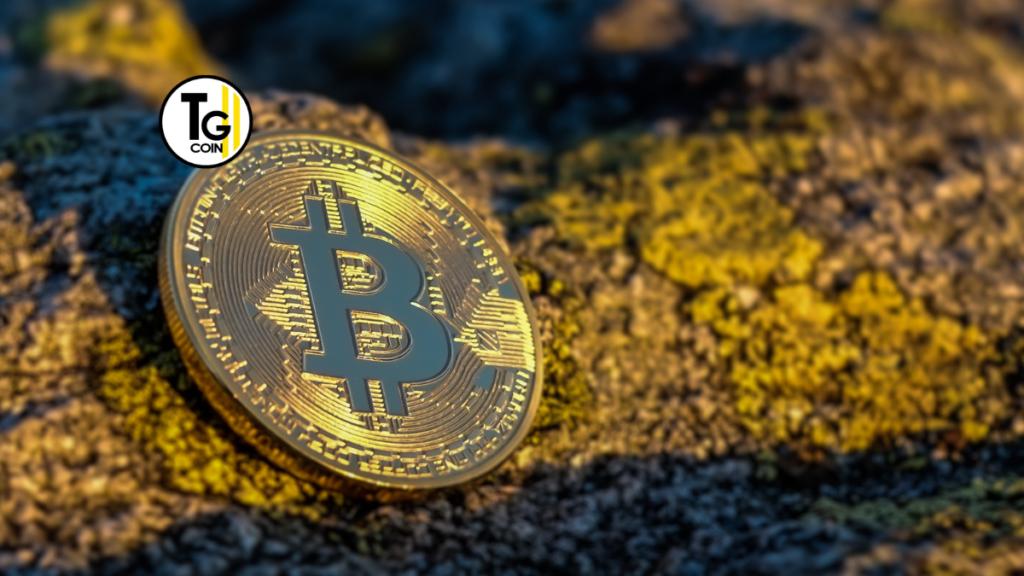 Nella giornata di oggi, 14 aprile 2021, Coinbase fa la sua entrata a Wall Street. Coinbase, fondata nel 2012, è il più grande exchange di criptovalute negli Stati Uniti.
