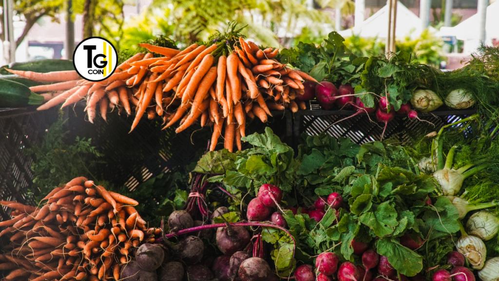 L'agricoltura subisce lo scarso accesso alle infrastrutture digitali per la blockchain. Il settore agricolo non riesce a svilupparsi