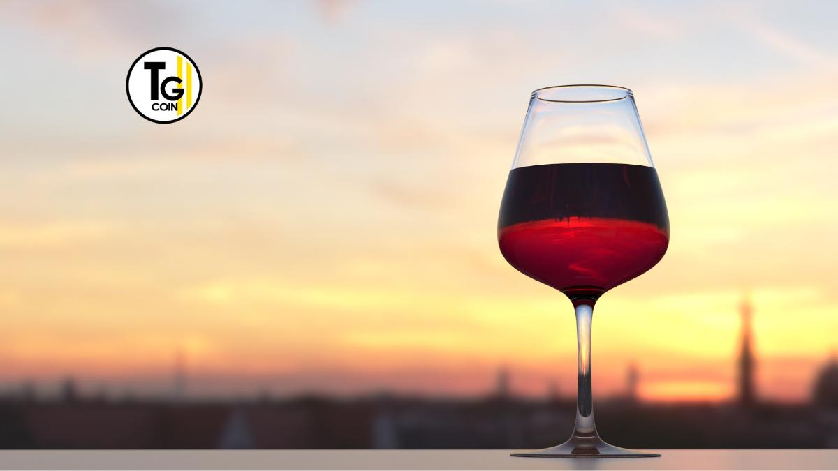 """Vin Malin è considerato un """"semplice scaricatore di scorte di vino a prezzi bassi"""". Il sito web è stato lanciato dal gruppo Ile-de-France Alphaprim e acquistato dal negociante Bejot Vins & Terroirs e dal Enoteca Caveau de la Tour a Meursault nel 2015."""